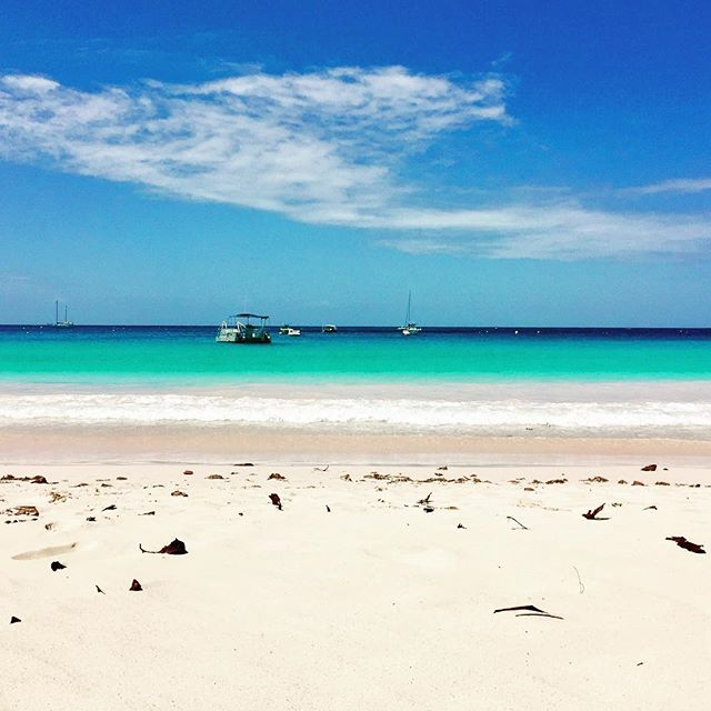 #backagain #barbados #carlislebay #colours #lovemyjob