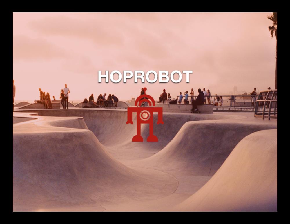 HopRobot