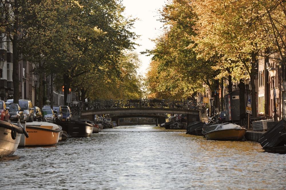 Canal Portal.jpg