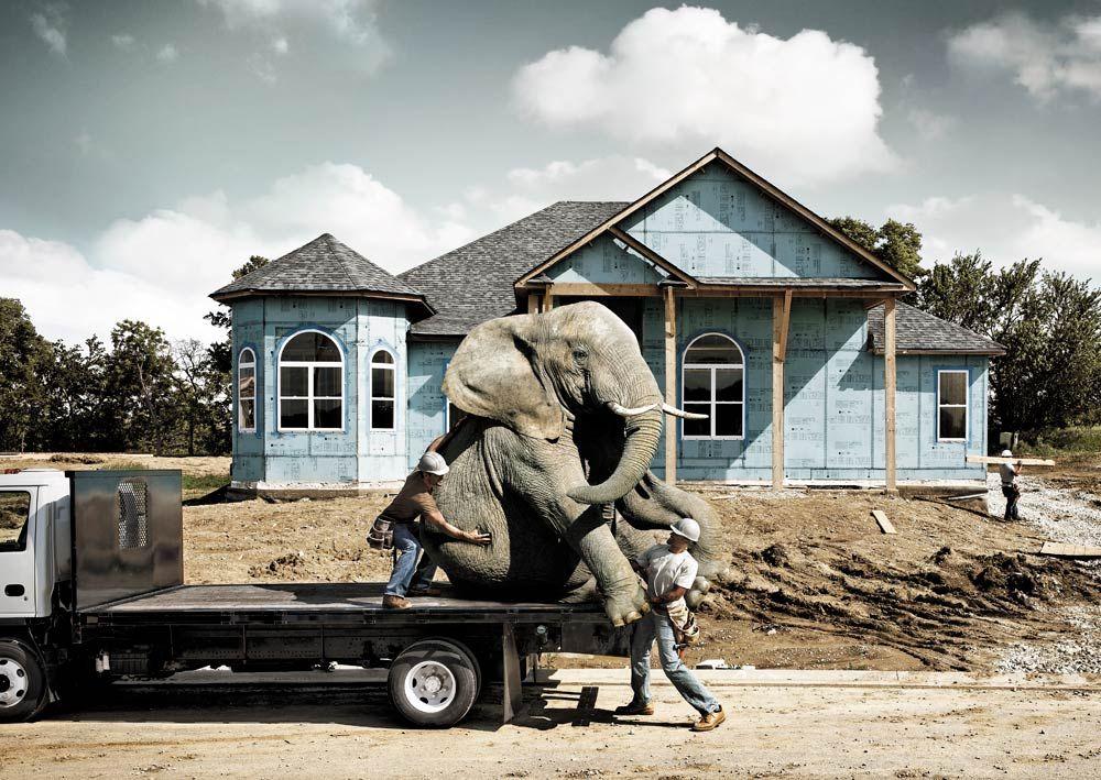 USG-Elephant_Truck.LH.jpg