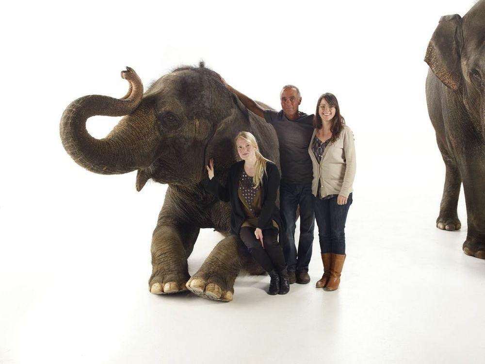 Elephant-013546-.jpg
