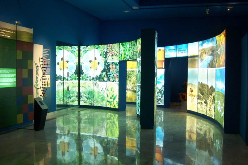 Museo_Botanico_Cordoba_01.jpg
