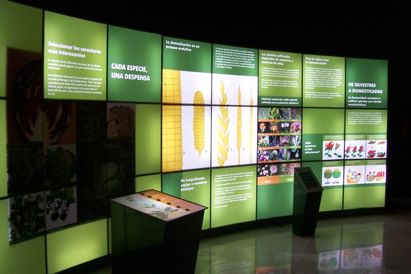 Museo_Botanico_Cordoba_04.jpg