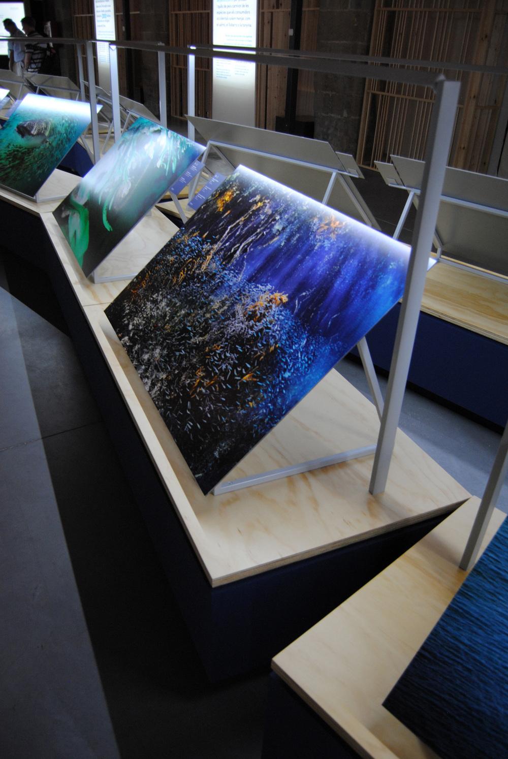 Planet-Ocean---04.jpg