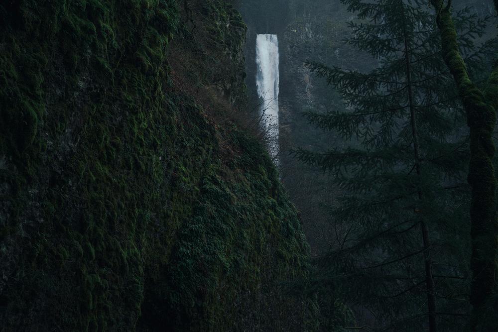 Multnomah Falls peeking through the trees