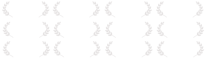 film festival logos FLAT CLEAR.png