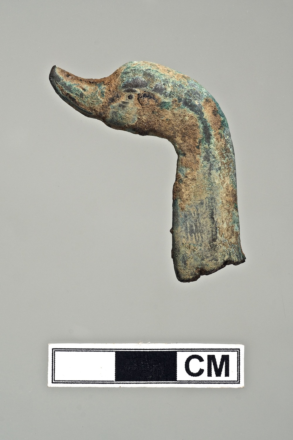 Metal Goose Head, Karanis, Egypt.