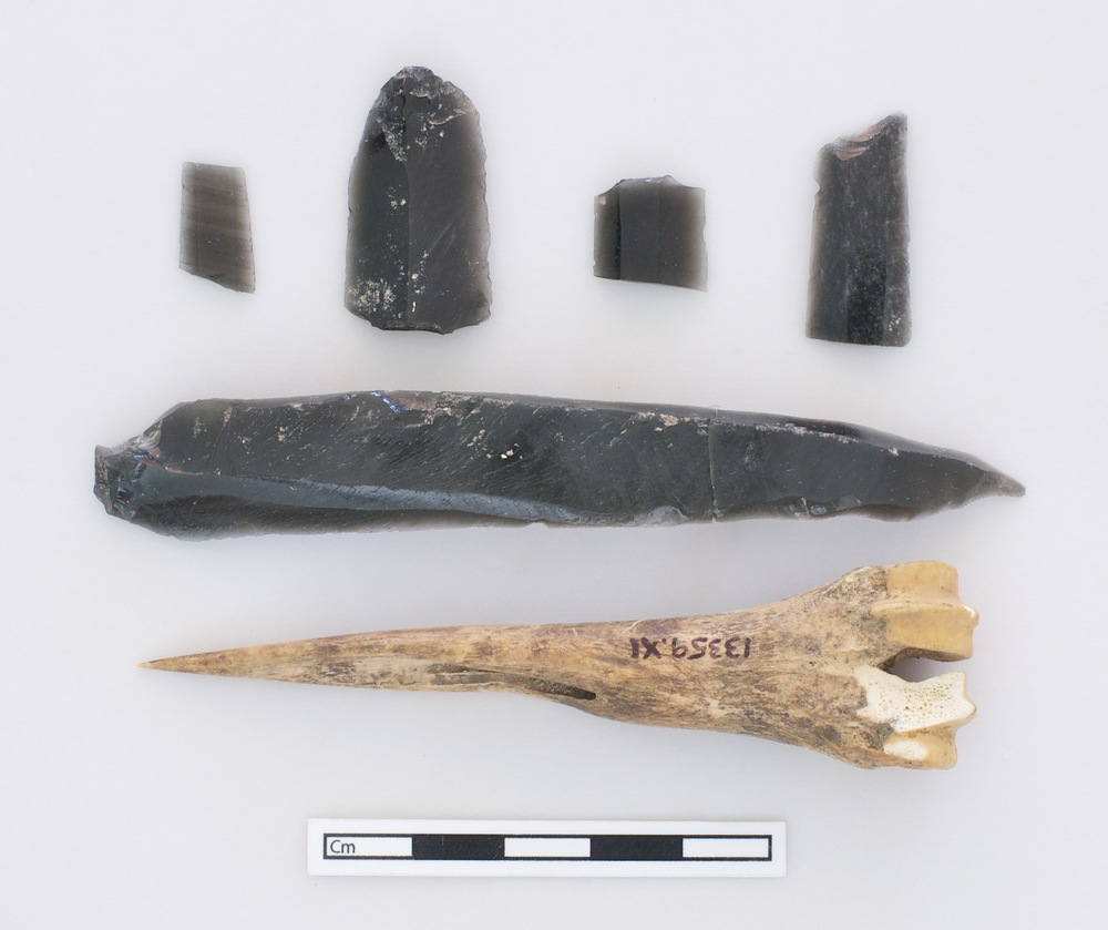 Cluster of obsidian and worked bone.