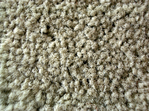 Getting the most out of carpeted floors