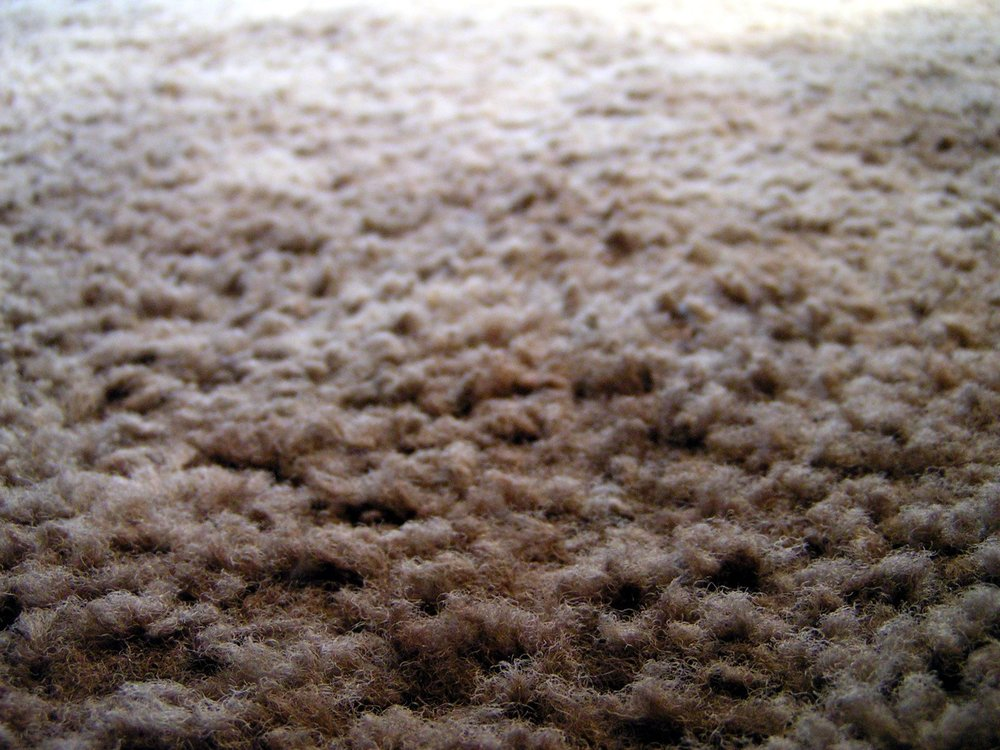 A new carpet is more than just the latest in a series of things you lay down on the floor. It sets the tone for the room, with both its color and its feel. Think about the amount of time you spend on your feet at home – you want something that looks nice and feels great on your tired feet after a long day at work. This is where plush carpeting comes in. The name itself conjures images of something decadently soft, a class beyond what you are used to. This is the kind of carpeting for those looking to treat themselves in a subtle way. The kind of carpeting you deserve. We here at Ozburn-Hessey certainly think so, which is why we offer it from a number of retailers, as well as residential installation services for the greater Nashville area. Plush, Please The first thing you will notice about plush carpeting is that it is denser than most carpets you come across. This is what gives it that more comforting feel, because every step you take allows your foot to sink deeper into the carpet, getting a nice hug from the soft fibers. This also makes plush carpets last longer than your average carpet, so you don't have to worry about getting something new for quite a while. And honestly, after you have experienced the joys of plush carpeting, why would you want to?   This is the carpet that is perfectly suited to a master bedroom, or a dining room you are looking to add a touch of class to. When chosen in a darker color, the effects combine to make whatever room it is installed into one with an elegant, Old-World style. It's a look that is easy to maintain as well, since the way plush carpeting is manufactured makes it more dirt resistant. And as a bonus, the natural cushion of the carpeting means you probably won't have to install a mat underneath, something we here at Ozburn-Hessey are happy to do anyway. The Cons On the other hand, plush carpeting might not be the best option for every room. While the carpeting is resistant to dirt, it does have a tendency to show stains and vacuum marks more than the average carpet, which cuts down on the amount of class you can add to a room. Additionally, stains will show up more vividly, so the carpet might best reserved for a room where drinks aren't allowed, unless you trust the people drinking them. Another downside is the cost, which at anywhere between $610 and $780 for enough middle-grade material to cover a 500 square-foot area might be too expensive. So while there are downsides, for many people the benefits they feel every time one of their feet touches the lush, inviting comfort of plush carpeting far outweighs them. If this feeling is something you decide you need in your life, then contact the professionals here at Ozburn-Hessey and let us find you the one thing to take your flooring game to the next level.