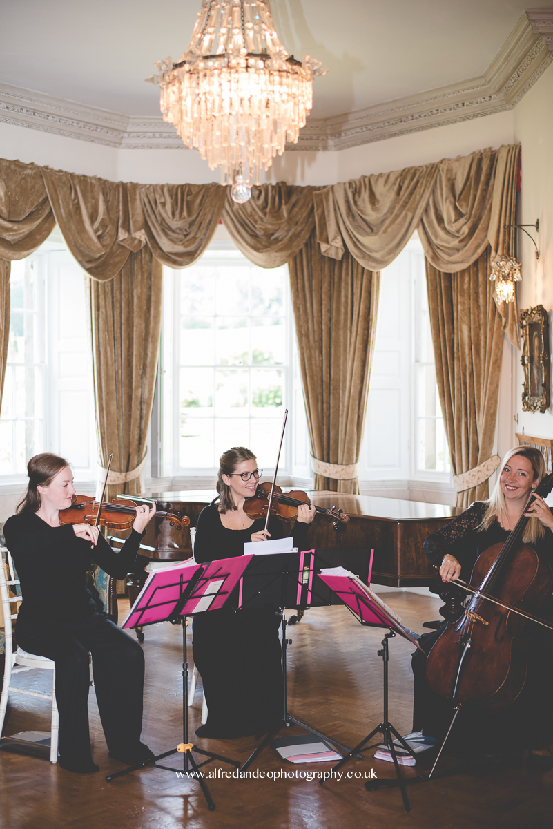 string quartet for wedding in derbyshire