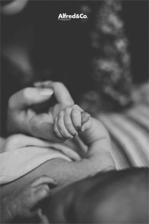 Newborn baby boy manchester41.jpg