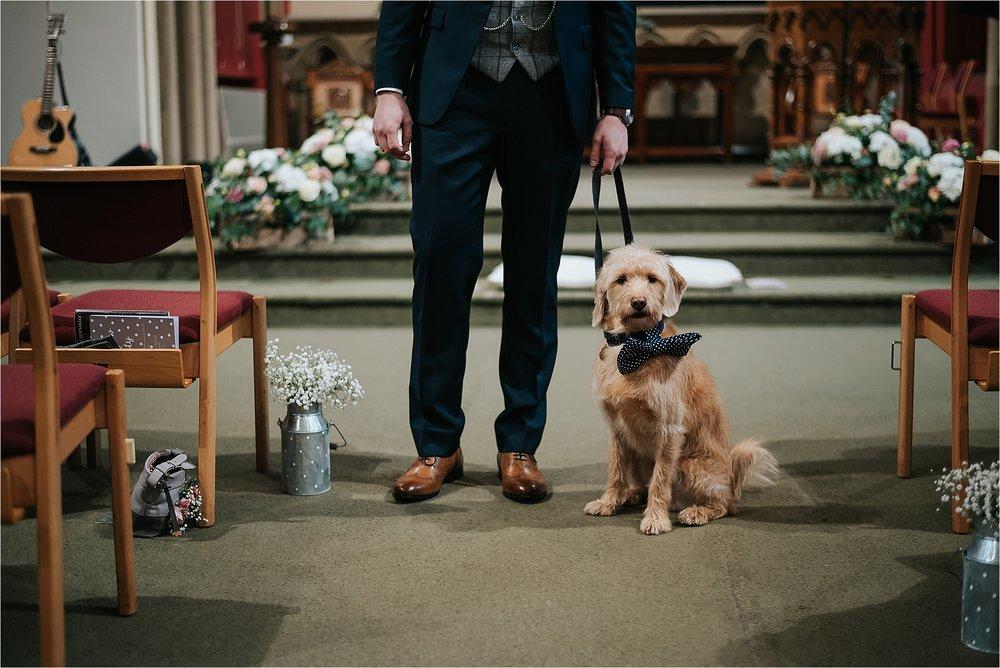 dog at wedding in church