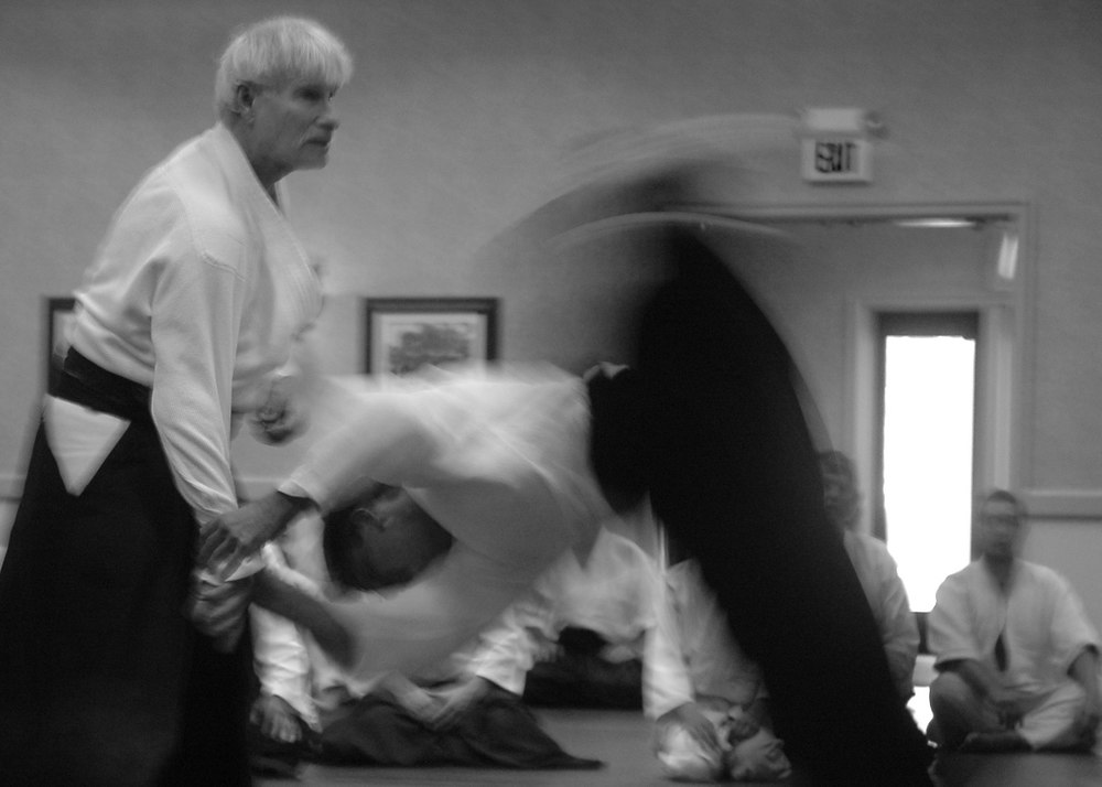 aikido camp 2009 273 - Version 2.jpg