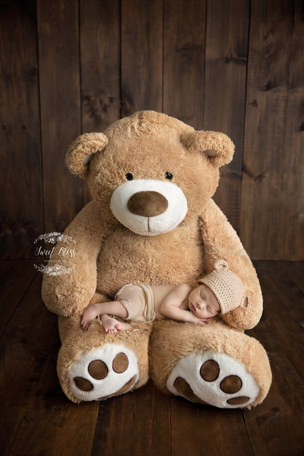 HarfordCountyNewborn_SweetBlissPhotography_bigteddybear.jpg