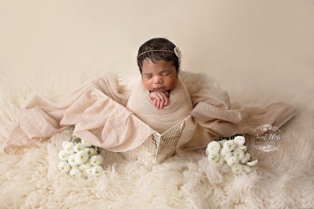 BaltimoreNewbornPhotographer_Harfordcountynewbornphotography_SweetBlissPhoto_whitebasket1.jpg