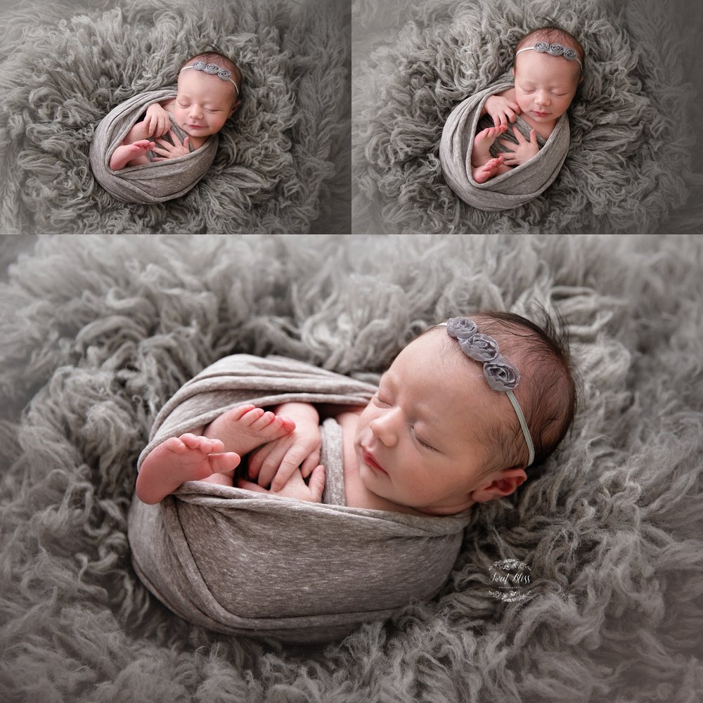 Sweetblissphotography_newborn_greyfur1.jpg