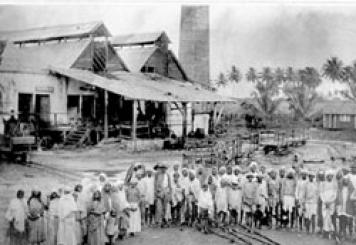 images_Caribbean_indentured_servants_000004097.jpg