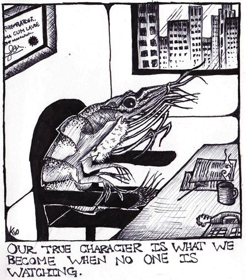 Krill for internet.jpg