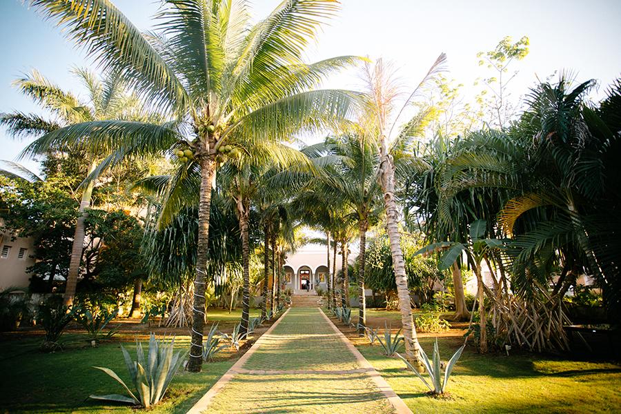 Riveria Maya