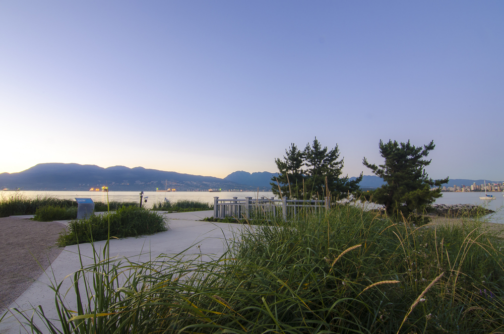 New Viewing Plaza at Dusk,     Jericho Beach,  Photo by Brett Hitchins