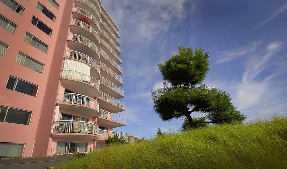 BRS-Villa-Maris-Green-Roof-Enns-Gauthier-Landscape-Architecture-Vancouver-Landscape-Architectural-Photography-Brett-Ryan-Studios-Green-Roof-007