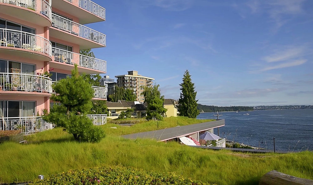 BRS-Villa-Maris-Green-Roof-Enns-Gauthier-Landscape-Architecture-Vancouver-Landscape-Architectural-Photography-Brett-Ryan-Studios-Green-Roof-001