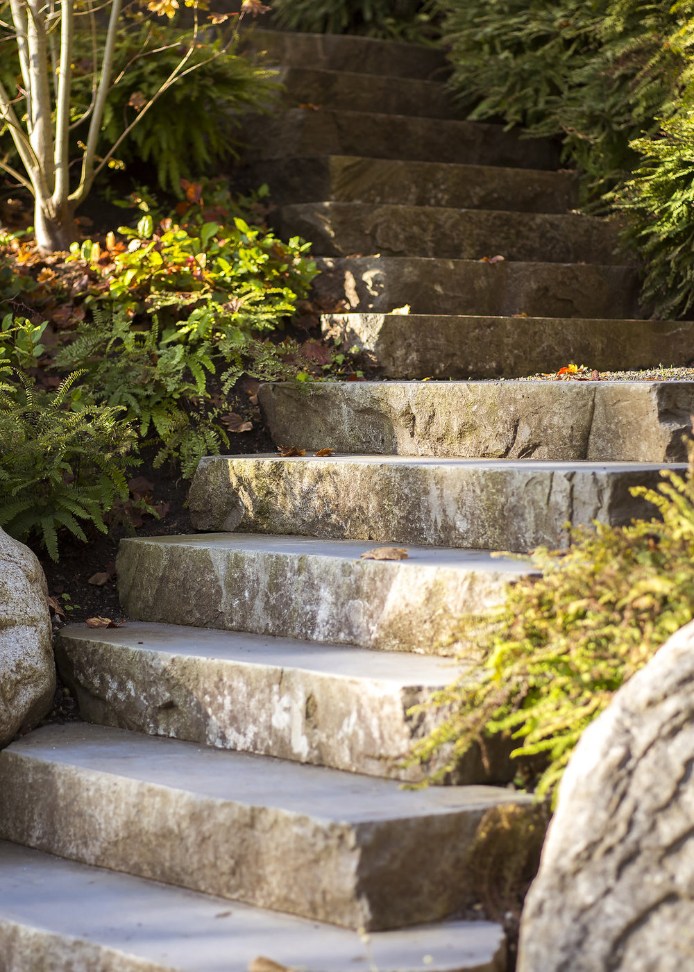 BRS-Coves-End-Paul-Sangha-Landscape-Architecture-Vancouver-Photography-Brett-Ryan-Studios-Residential-Natural-Stone-Steps