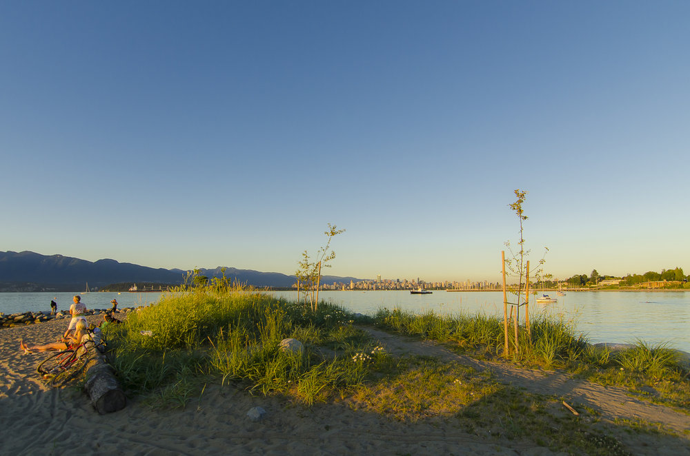 Jericho Beach Park improvements