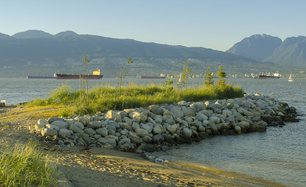 Jericho Beach Park shoreline improvements