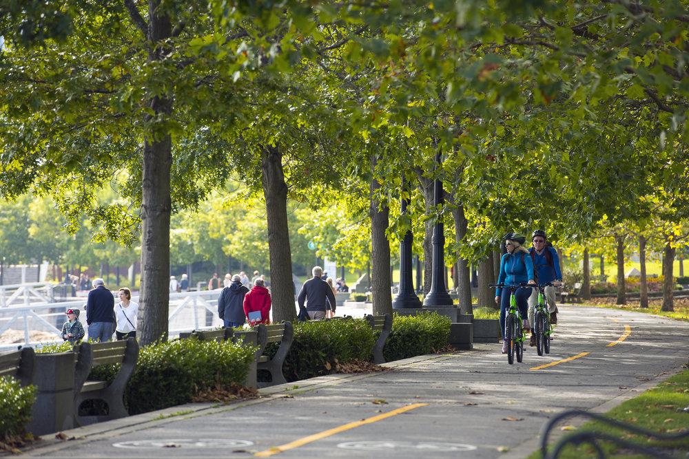 Coal Harbour Vancouver cyclist designed landscape architecture by PFS Studio