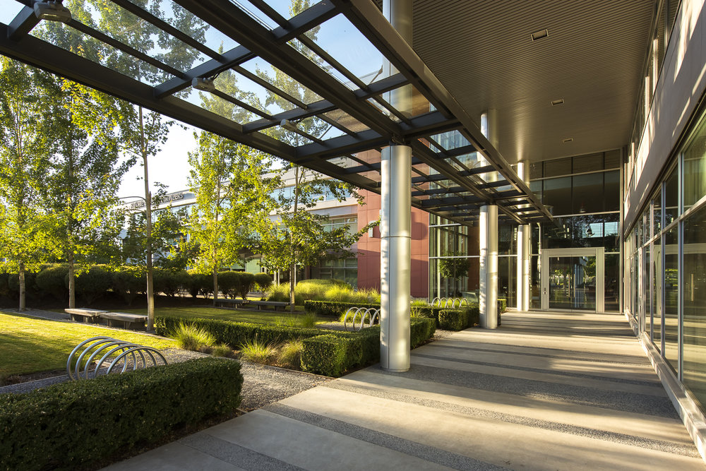 Glenlyon Business Park landscape architecture designed by PFS Studio