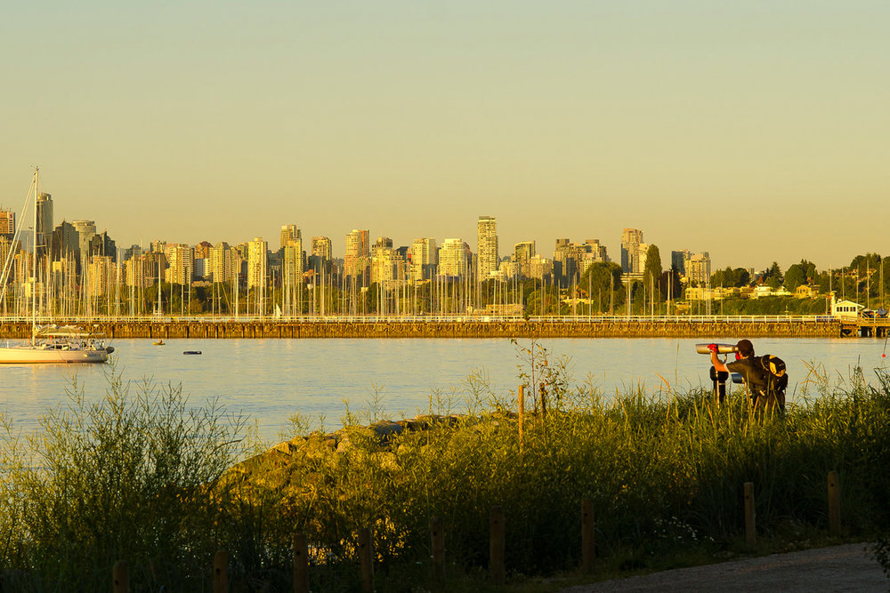 Jericho Beach Park improvements by Connect Landscape Architecture and Moffat Nichol in Vancouver