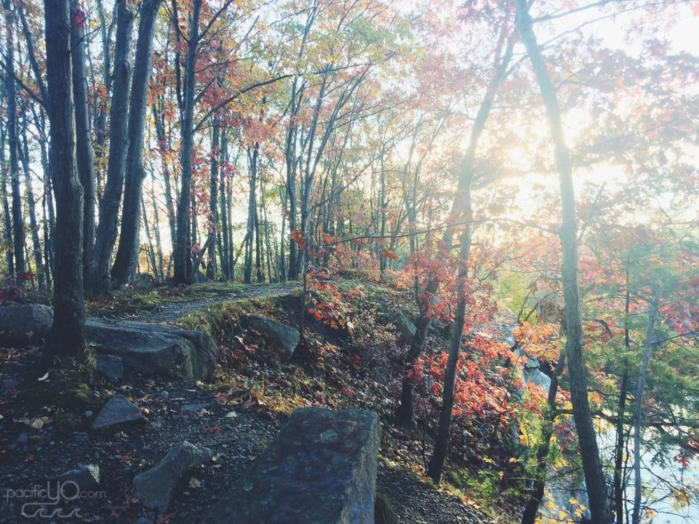 Trail to the Quincy Quarries