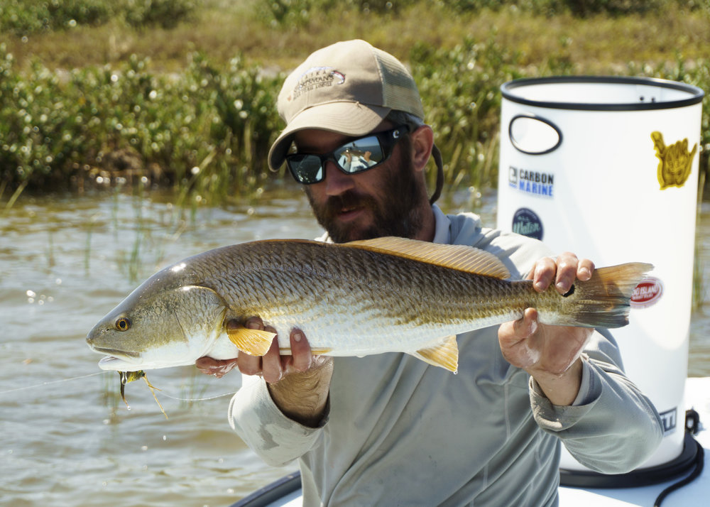 Texas Red Drum