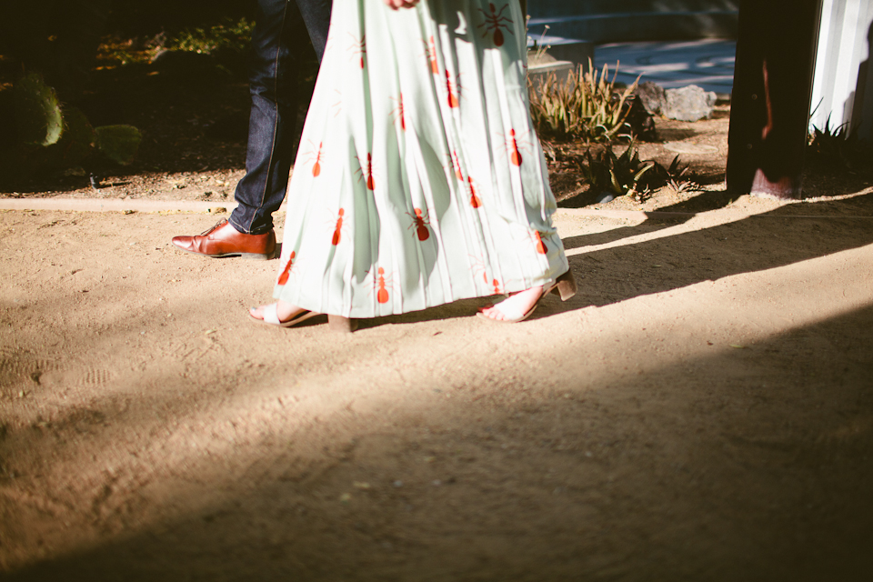 Springs preserve engagement session-1060.jpg