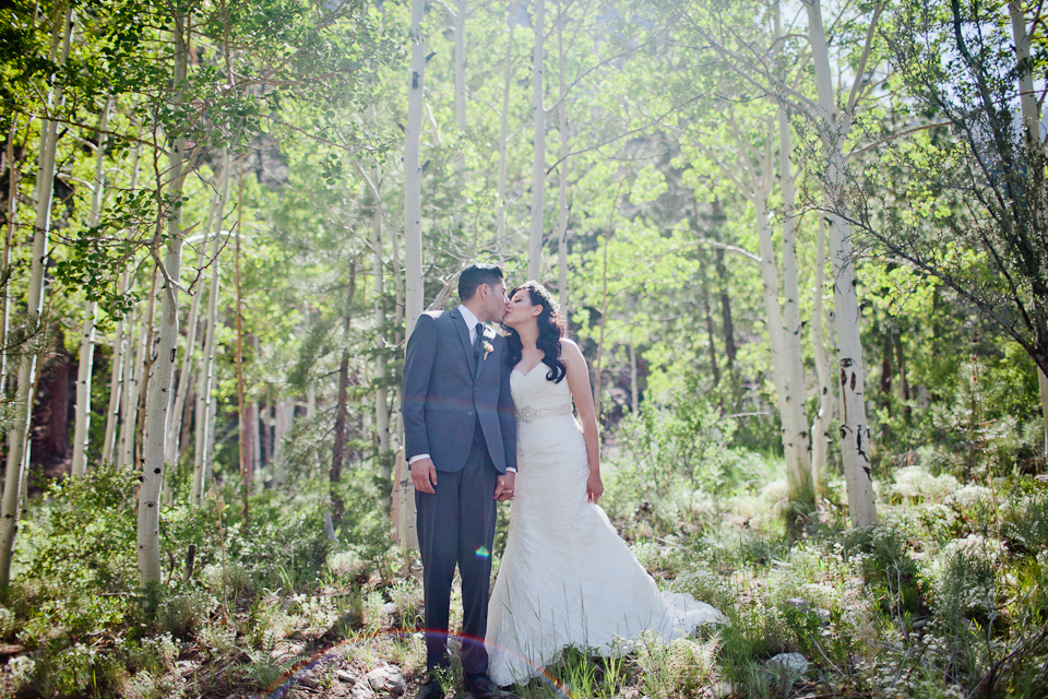 Mt Charleston wedding photography-1041.jpg