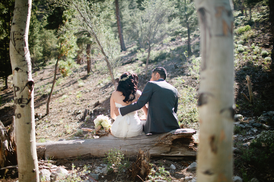 Mt Charleston wedding photography-1055.jpg