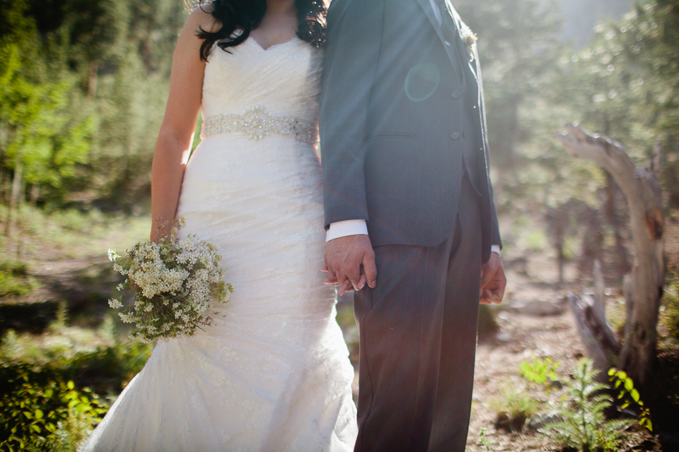 Mt Charleston wedding photography-1068.jpg