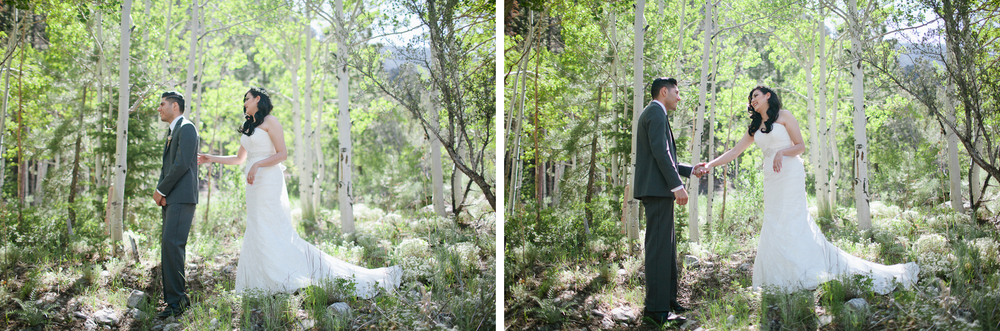 Mt Charleston wedding photography-4.jpg