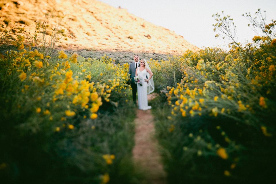Zion wedding photographer-1006-3.jpg