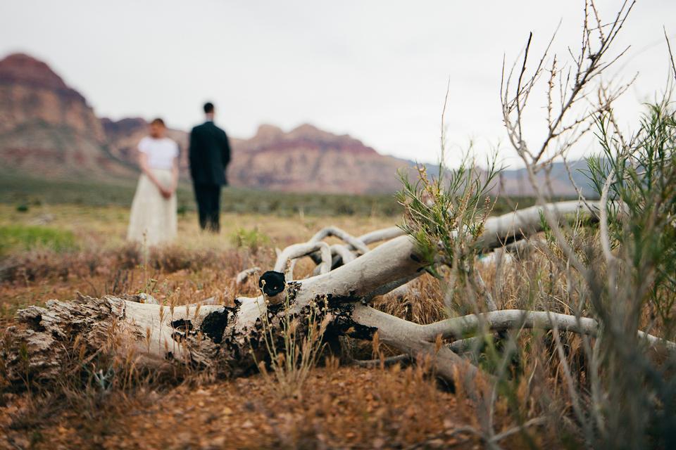 Lorraine & Trevor neon museum and desert elopement-1082.jpg