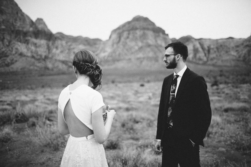 Lorraine & Trevor neon museum and desert elopement-1087.jpg