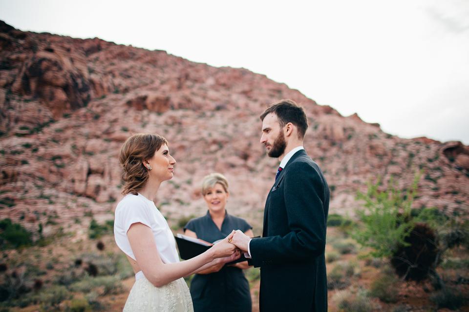 Lorraine & Trevor neon museum and desert elopement-1150.jpg