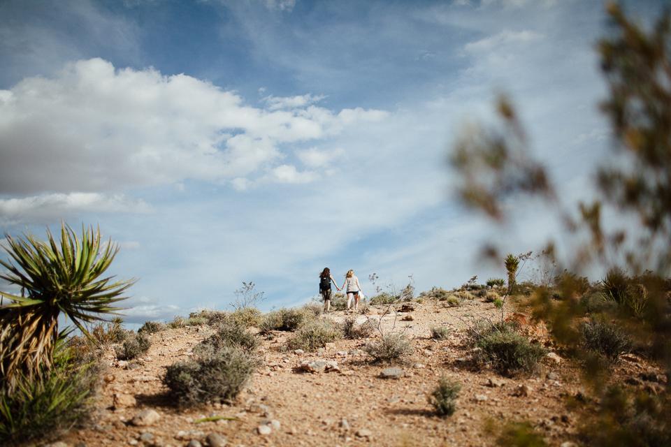 Las Vegas wedding photographers-1002.jpg