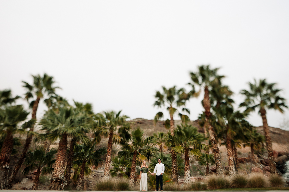 palm tree engagement