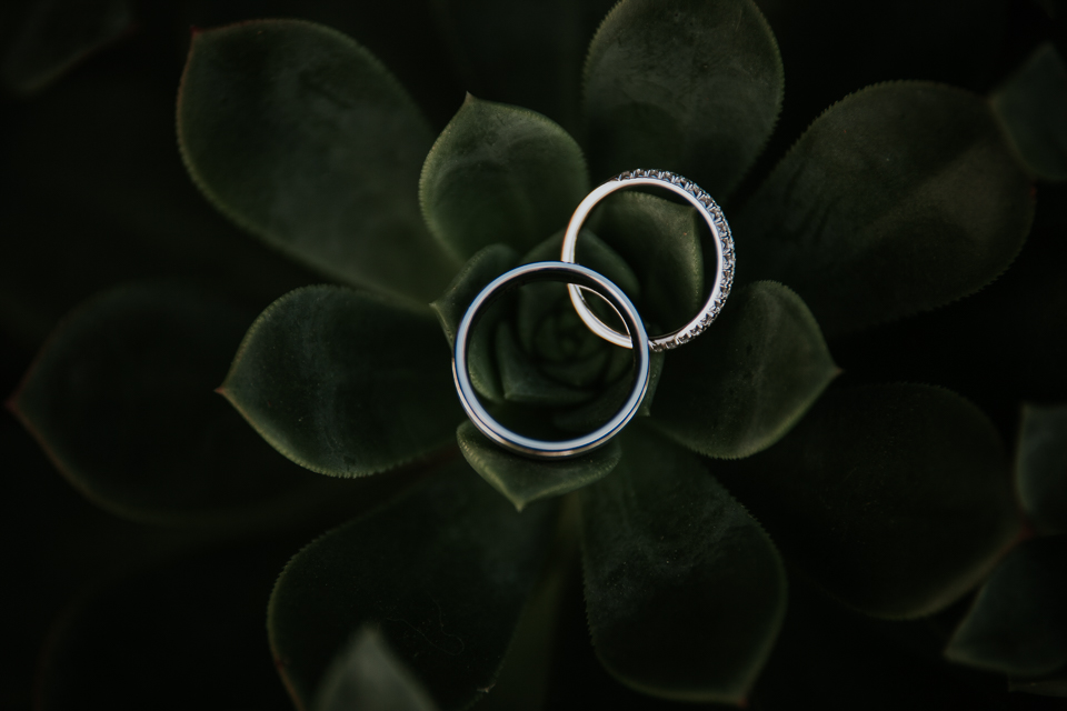 wedding ring in succulents