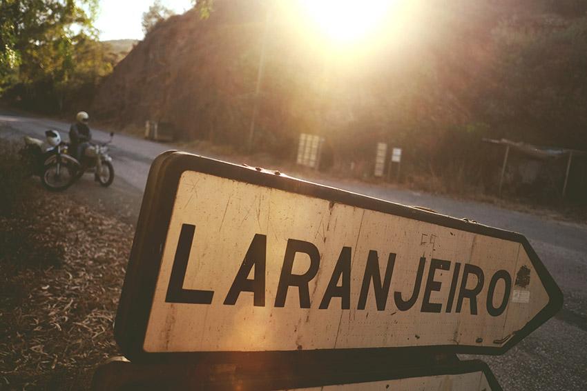 laranjero.jpg