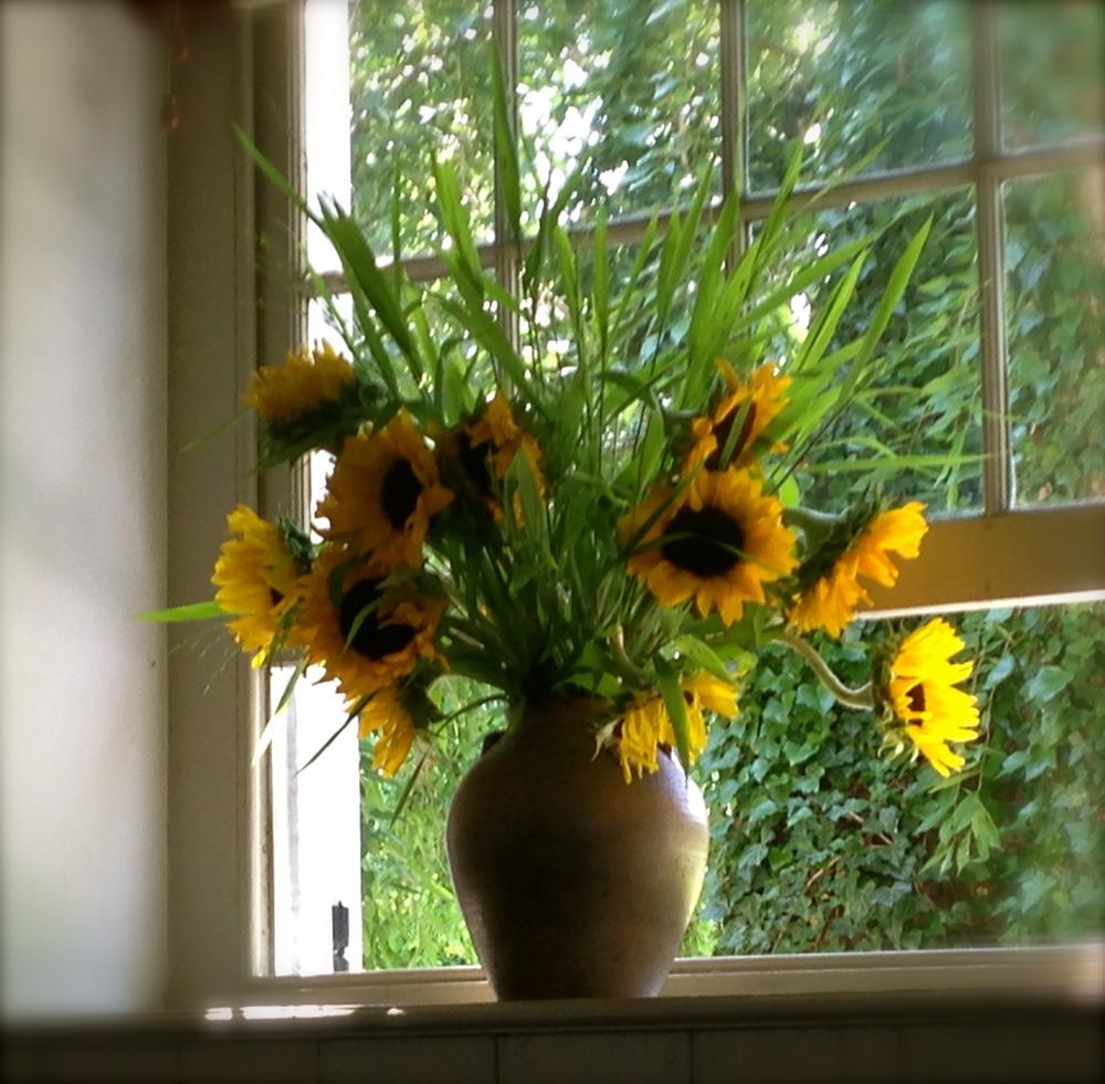 sunflowers.jog