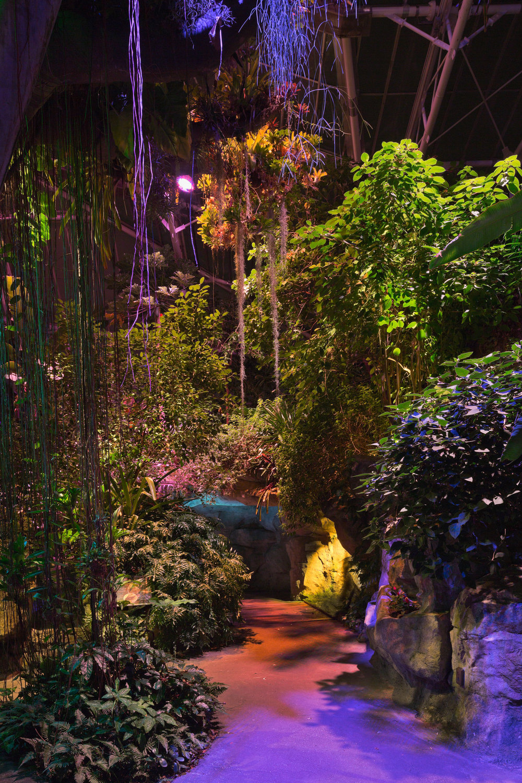 Cleveland Botanical Garden Glasshouse — Tec Studio Inc.